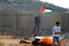 resistentes na palestina