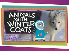 Have you ever wondered how animals stay warm in the winter? Learn all about their natural cozy coats and the other awesome tricks they use to make it through the cold conditions!