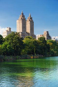 A travel photo of Central Park in New York City on a sunny day!