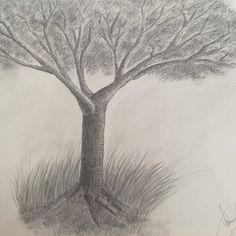#drawing #pencildrawing #landscape #tree_captures