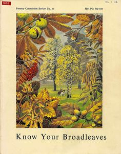 Know Your Broadleaves - Forestry Commission booklet, 1968 - cover by Charles Tunnicliffe RA