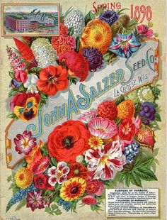 John A. Salzer seed catalogue