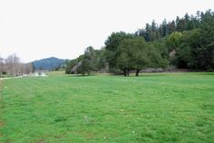 Huge meadow for team building activities, softball games, weddings, concerts and festivals