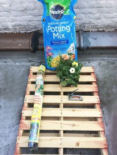 Today was one of the first truly spring like days in NYC so I decided to do some planting.  A pallet makes for a great huge planter for those who (like me) don'…