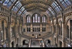 Photo of the Week: Long Exposure at London's Natural History Museum Daily Jigsaw, Burlington Arcade, Sky Garden, Brick Lane, London Places, History Museum, Photos Of The Week, Natural History, Hogwarts