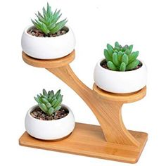 White Ceramic Succulent Pots with 3 Tier Bamboo Saucers Stand Holder - Modern Decorative Flower Planter Plant Pot with Drainage - Home Office Desk Garden Mini Cactus Pot Indoor Decoration Wooden Plant Stands, Diy Plant Stand, House Plants Decor, Plant Decor, Small Potted Plants, Small Cactus, Air Plants, Cactus Plants, Cactus Pot