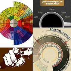 A R O M A  D I  C A F F É  . La degustación del café es un arte expresada a través de la pasión. Percibir sus variopintos aromas y sabores requiere un método y constante práctica. . En #AromaDiCaffé te brindamos la #MáximaExperiencia a tus sentidos en cada taza del mejor café. . Conoce un poco más acerca de las propiedades aromáticas del café a través de esta rueda organoléptica y descubre más acerca de ésta apasionante bebida…