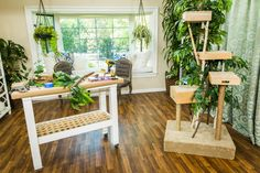 Cat trees can be expensive. @paigehemmis shows you how to make your own! For more DIY's, tune in to Home & Family weekdays at 10a/9c on Hallmark Channel!