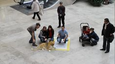 Augmented Reality for National Geographic / UPC Hungary by Barnabas Nanay, via Behance