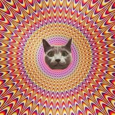 psychedelic - Google Search