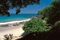 En la costa Pacífica del norte de Costa Rica -Parque Nacional Santa Rosa, provincia de Guanacaste- se encuentran los últimos relictos bien conservados de bosque seco tropical de América Central.