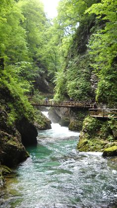 Vintar Gorge Slovenia Places Ive Been, Places To Go, Slovenia, Summer 2014, The Good Place, Travel Destinations, Road Trip, Europe, Tours