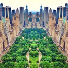 Central Park NYC. The Skyblue Skyvacious Skylark lives in a blue park similar to this one.