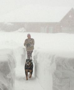2014 Buffalo, New York snow storm #BUFFALO