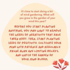 Planting seeds of positivity in your mind Mind Gym, Covent Garden, Planting Seeds, Meditation, Mindfulness, Positivity, Plants, Seed Starting, Plant