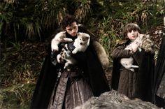 En el primer capitulo, cuando encuentran a los huargos, simbolo de la casa Stark.