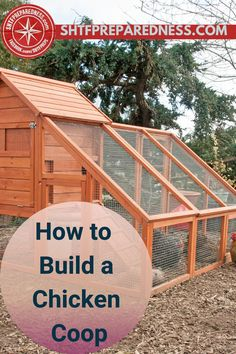 Have you ever built a chicken coop? This is how you do it! If you are looking for easy DIY ideas and designs, SHTFPreparedness have something for you. Check out their post for simple plans and building guide. #buildingachickencoop #howtobuildachickencoop #chickencoopguide #survivalchickencoop