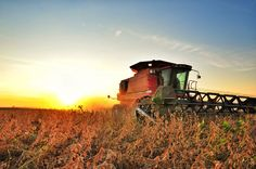 Sunset as farmers are working well into the night to try to harvest as much of this year's crop as possible before Isaac moves into the Mississippi Delta. - near Bourbon, Mississippi - www.flatoutdelta.com