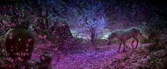 Au Pays de la Fleur d'Oranger Violette Sucree - Perfume From An Enchanted Forest