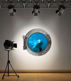 Full Colour Dolphin Porthole Wall Sticker Decal Kids Bedroom Decoration Ocean Sea, http://www.amazon.co.uk/dp/B00FI0MDIY/ref=cm_sw_r_pi_awd_zlXetb1SC5E68
