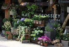 flower shop design - Buscar con Google