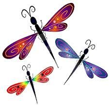 Think of my sister everytime I see a dragonfly!!  <3