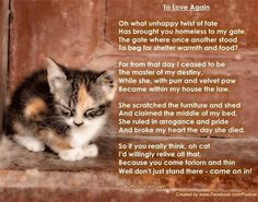 To love again - a poem for cat owners Foster Kittens, Cats And Kittens, Crazy Cat Lady, Crazy Cats, Pet Poems, Baby Animals, Cute Animals, Pet Loss Grief, Owning A Cat