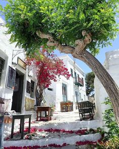 island of Amorgos (Αμοργός) Walking down this beautiful path . look like a fairytale ❤ Great pic by Cyclades Islands, Cyclades Greece, Corfu Island, Mykonos Greece, Greece Islands, Athens Greece, Santorini, Paros, Beautiful Places To Visit