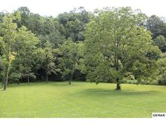 This gorgeous lot has some cleared area and wooded for extra privacy if desired! A creek flows through the property as well. It is only a short drive to either Cosby or Gatliburg! A great location for investment property!   Brandon Williams Your Agent in the Smokies! REALTOR® / Affiliate Broker License # 302107 Brandon@youragentinthesmokies.com www.youragentinthesmokies.com 865-806-9005 Mobile 865-908-4567 Office  865-280-1433 Fax 400 Park Rd, Suite 209 Sevierville, TN 37862