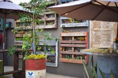 Vertical pallet garden. Whitsunday Arts & Cultural Centre http://www.josweeney.com.au/#/thewacc/