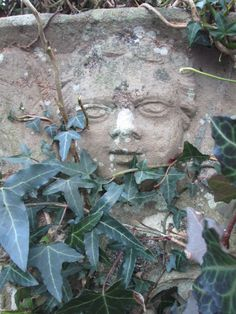 Ivy covered head, 18thC, Welsh Newton