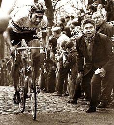 Eddy Merckx chez Molteni - Campione del Mondo en 1971 et 1974