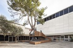 Ifat Finkelman e Deborah Warschawski, The Youth Wing for Art Education, Israel Museum, Gerusalemme - tree in public spaces in pictures - Google Search
