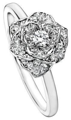 Piaget Rose ring in 18K white gold set with 36 brilliant-cut diamonds. (Board: Put a Ring on it.)
