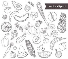 Fruits and Vegetables Line Clip Art Digital Stamps Vector