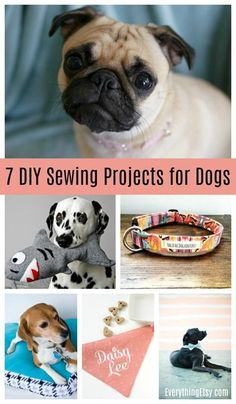 7 DIY Sewing Project