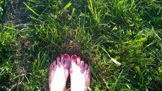 Taka zielona trawa - skansen w Chorzowie