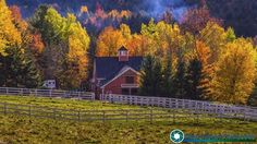 Amazing foliage in The Mad River Valley of Vermont.  #foliage #fallfoliage #vermont #newenglandphotography #newengland #landscape #newengland_photography #ScenicVermontPhotography #ScenicVermont  Feel free to visit my website - http://ift.tt/2aTNg7U
