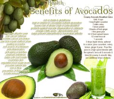 Health Benefits of Avocados - Liver cleansing raw food diet recipes.