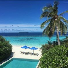 Dusit Thani is a stunning, palm-dotted resort in the heart of dreamy Maldives 💙 #instatravel #luxurytravel #luxury #adventure #love #maldives #indianocean #luxtravel #luxtripper