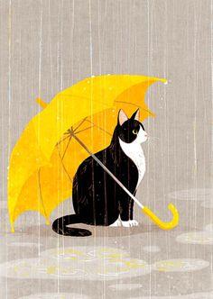 Beatutiful illustration of a cat under an umbrella in the rain. Belle illustration d'un chat sous un parapluie sous la pluie. Crazy Cat Lady, Crazy Cats, I Love Cats, Cute Cats, Umbrella Art, Yellow Umbrella, Totes Umbrella, Umbrella Painting, Simple Illustration
