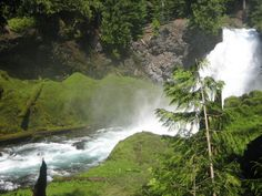 Located along the West Cascades National Scenic Byways, lies Koosah Falls, created by lava that moved into McKenzie River years ago! Crater Lake National Park, National Parks, Oregon Trail, Pacific Northwest, North West, Waterfalls, Lava, Tours, River