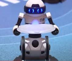 CES 2014: In Which We Meet MiP the Robot (video)