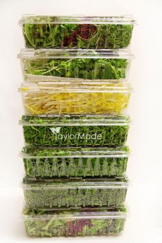 microgreen stack
