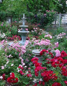 Gorgeous Rose cottage garden landscaping design ideas and decor