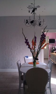 "Orange and purple gladiolas . "" bought ;)"