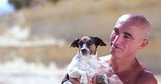 Hund und Herrchen sind tolle Synchronschmwimmer #News #Unterhaltung