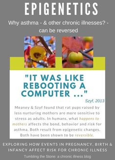 """Moshe Szyf in a 2013 article in Discover on his and Michael Meaney's finding that epigenetic effects that generally last a lifetime - can also be reversed. """"It was lke rebooting a computer!"""" This offered an explanation for Tony Madrid's work in curing asthma in children by treating their mothers for difficult events they had experienced during their pregnancies, births and in their asthmatic kids' early lives."""