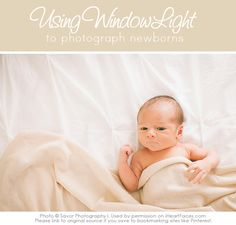 Newborn Photography Lighting Tips - Using Window Light for Newborn Photos