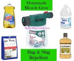Natural Bug Repellent @MamasBlogCentral#natural#bug#repellent